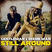 Still Around von Gentleman