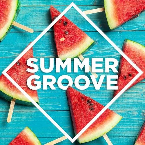 Summer Groove de Various Artists