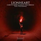 Lionheart de Gareth Emery