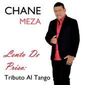Lento de Prisa: Tributo al Tango by Chane Meza