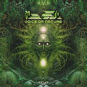 Voice of Nature by Various Artists