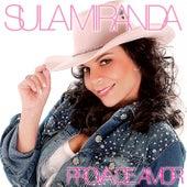 Prova de Amor by Sula Miranda