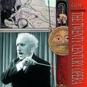 Arturo Toscanini conducts Sibelius von Arturo Toscanini