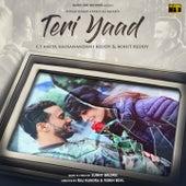 Teri Yaad by Rahat Fateh Ali Khan