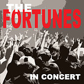 In Concert von The Fortunes