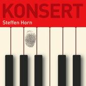 Konsert de Steffen Horn