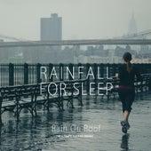 Rain on Roof by Rainfall For Sleep