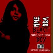 Beast Boy de Nme Dca