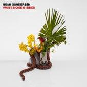 White Noise B-Sides de Noah Gundersen