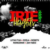 Irie Heights Riddim von Various Artists