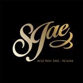 Acid Rain von SJae