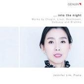 ...Into the Night von Jennifer Lim