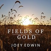 Fields of Gold (Instrumental Version) by Joey Edwin