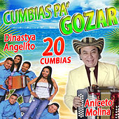 Cumbias Pa' Gozar by Various Artists