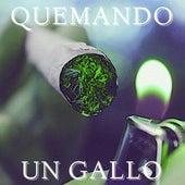 Quemando Un Gallo by Various Artists