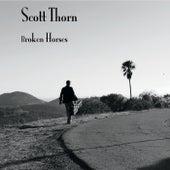 Broken Horses by Scott Thorn