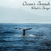 Whale's Songs de Ocean's Sounds