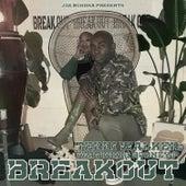 Breakout by Terri Walker