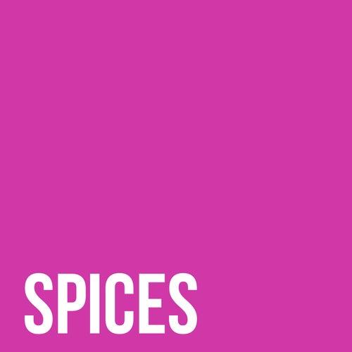 Spices (feat. Agust D, RM, j-hope & Shindy) von Dillaz