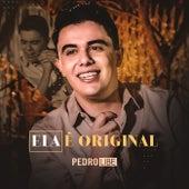 Ela É Original (Ao Vivo) by Pedro Libe