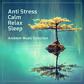 Anti Stress. Calm, Relax and Sleep von Various