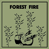 Forest Fire by Wintersleep