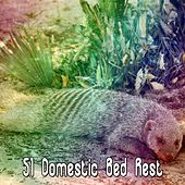 51 Domestic Bed Rest de Sounds Of Nature