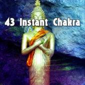 43 Instant Chakra von Massage Therapy Music