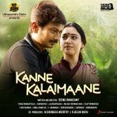 Kanne Kalaimaane (Original Motion Picture Soundtrack) de Yuvan Shankar Raja