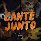 Cante Junto by Analaga