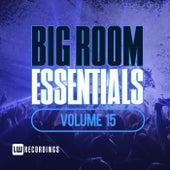 Big Room Essentials, Vol. 15 - EP von Various Artists
