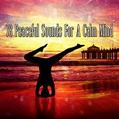 78 Peaceful Sounds For A Calm Mind von Massage Therapy Music
