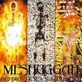 Destroy Erase Improve by Meshuggah