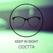 Keep In Sight by Odetta