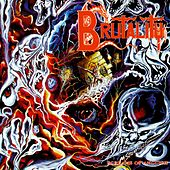 Screams of Anguish by Brutality