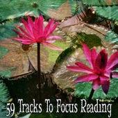 59 Tracks To Focus Reading von Entspannungsmusik
