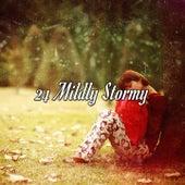 24 Mildly Stormy de Thunderstorm Sleep