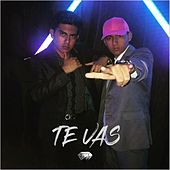 Te Vas by S