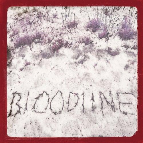 Bloodline von Fallulah