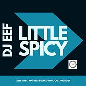 Little Spicy de DJ Eef