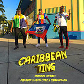 Caribbean Ting (Carnival Anthem) by Mikaben