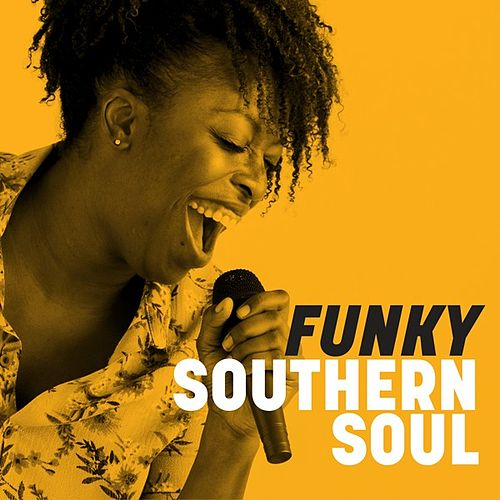 Funky Southern Soul von Various Artists
