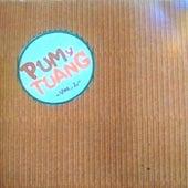 Pum y Tuang, Vol. 2 by Pum y Tuang