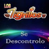 Se Descontrolo by Los Tigrillos