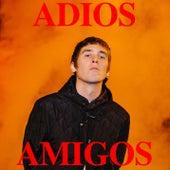 Adios Amigos by Thomas Stenstr??m
