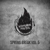 Spring Break, Vol. 5 de Various