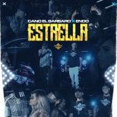 Estrella by ENDO