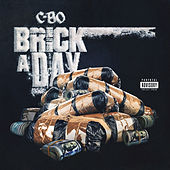 Brick A Day by C-BO