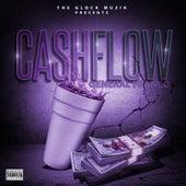 Cash Flow de El General