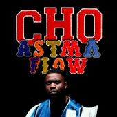 Astmaflow van CHO
